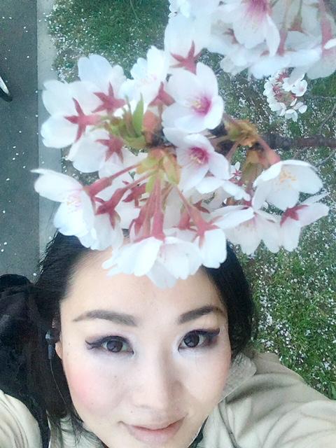 IMG_5796桜
