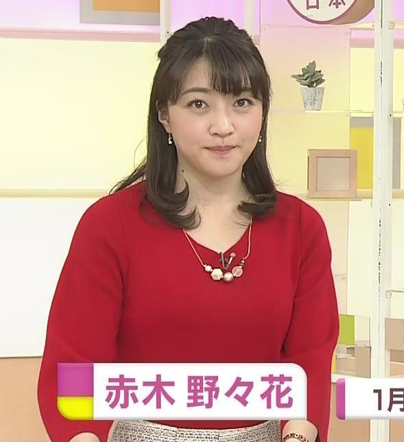 赤木野々花アナ ニットおっぱい!キャプ・エロ画像2