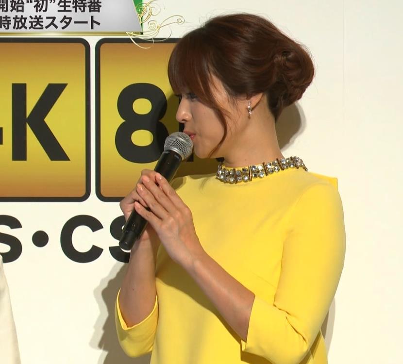 深田恭子 やっぱり乳がでかいキャプ・エロ画像6