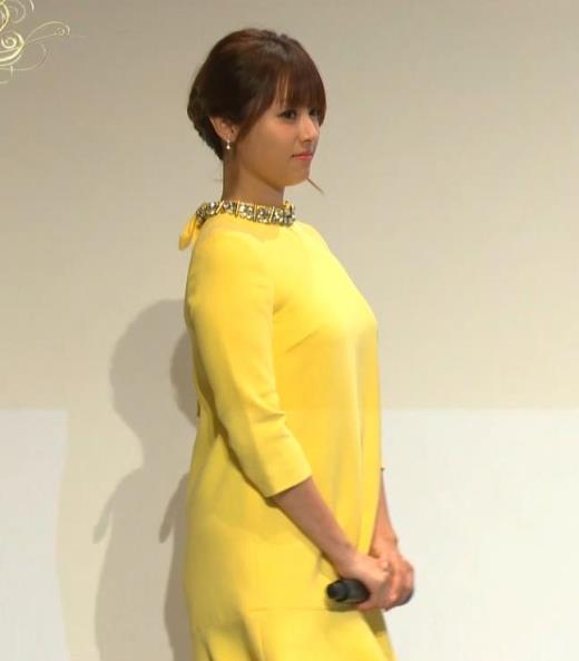 深田恭子 やっぱり乳がでかいキャプ画像(エロ・アイコラ画像)