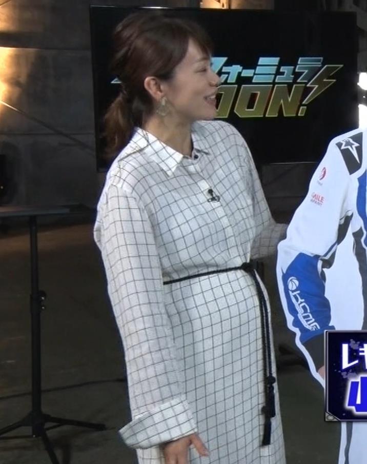 本田朋子アナ 妊娠ボテ腹キャプ・エロ画像