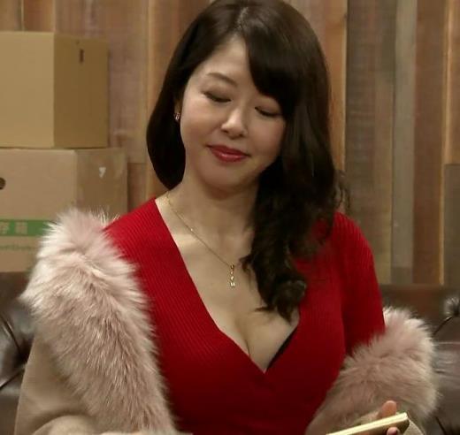 堀内敬子 これぞ熟女フェロモン!胸の谷間がエロ過ぎ…キャプ画像(エロ・アイコラ画像)