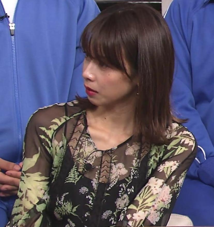 加藤綾子 「世界まる見え!テレビ特捜部」 キャプ・エロ画像2
