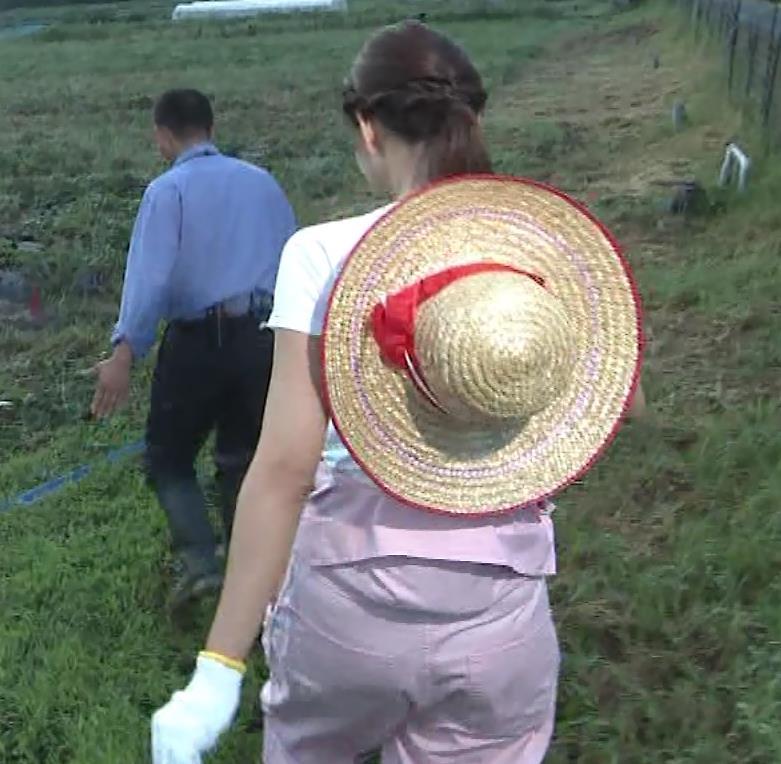 斎藤真美アナ 美人アナのTシャツおっぱいキャプ・エロ画像5