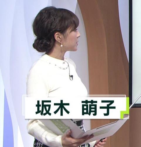 坂木萌子アナ 水着グラビアでもやると人気でそうな巨乳フリーアナキャプ・エロ画像5