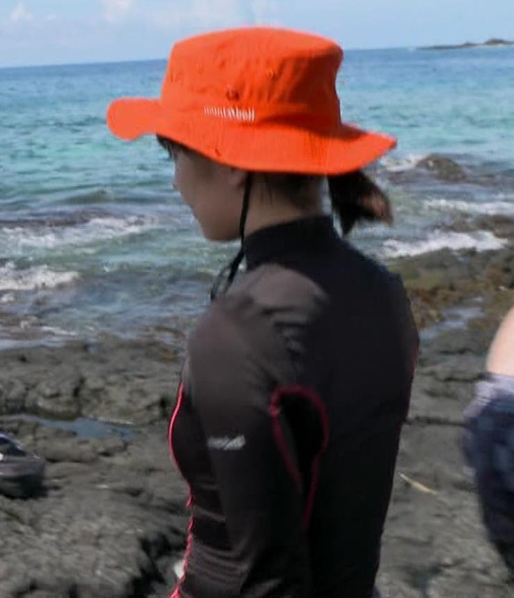 吉岡里帆 BSで水着姿になってたよ[横乳]キャプ・エロ画像11