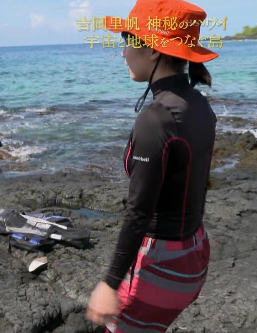 吉岡里帆 BSで水着姿になってたよ[横乳]キャプ・エロ画像10