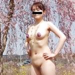 桜の木の下で全裸になってる素人女性の野外露出ヌード画像