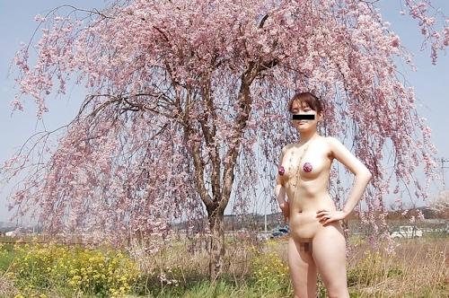桜の木の下で全裸になってる素人女性の野外露出ヌード画像 5