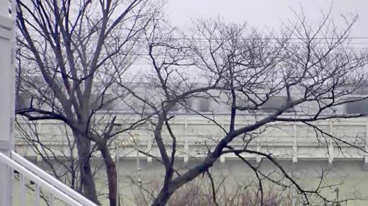 長谷川るい 画像 87