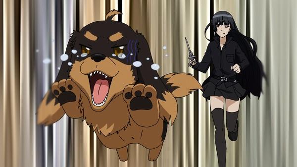【閲覧注意】女性さん、飼い犬6頭を蒸し焼きにしてSNSに画像を投稿してイイね稼ぎをする・・・・